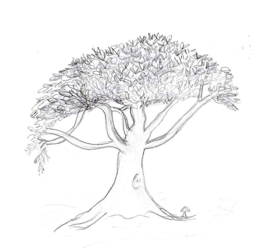 Lyn's tree